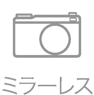 カメラレンタル【シェアカメ】 ミラーレス