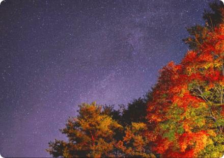 シェアカメ 星空・夜景セット